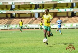 Sharks hit NSL new comers to extend cruising run
