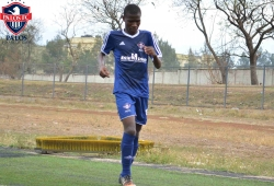 Tusker confirms interest in Palos youngster