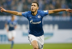 Schalke agree to sign Tottenham midfielder