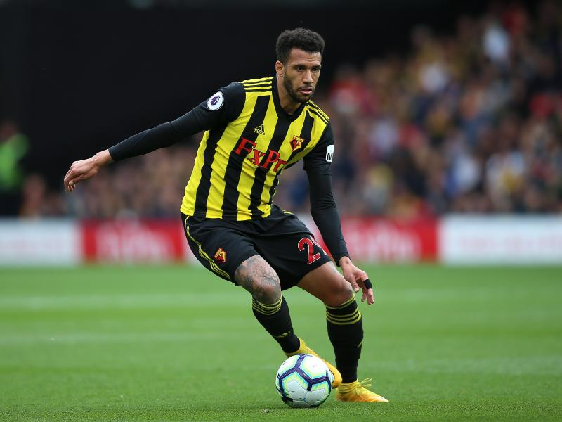 Watford midfielder Etienne Capoue back in training