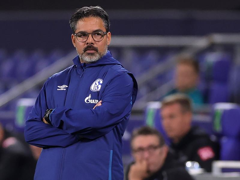 Schalke 04 have parted ways with manager David Wagner