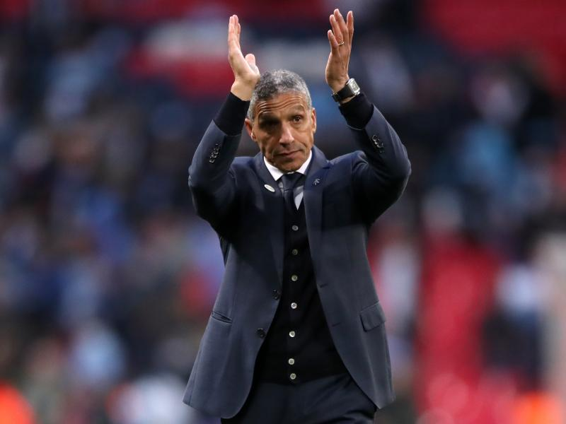 Image result for chris hughton