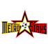 North Eastern Metro Stars-logo