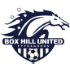 Box Hill United-logo