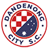 Dandenong City-logo