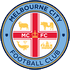 Melbourne City FC Youth-logo