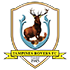Tampines Rovers FC-logo