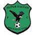 Super Eagles-logo