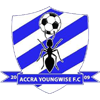 Young Wise FC-logo